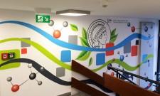 Graffiti im Max-Planck-Institut Mülheim