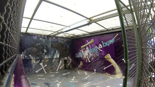 Der fertige Zwinger ist ein wahres Graffiti Kunstwerk geworden
